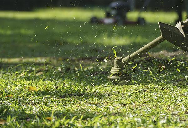 kiinteistonhuoltopalvelut nurmikonleikkaus